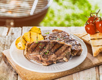 Delicious summer BBQ Stock Images