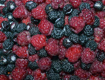 Delicious summer black macro macro blue closeup blackberries juicy diet strawberry ripe fruits dessert blueberry fresh healthy swe. Delicious summer black macro Royalty Free Stock Images