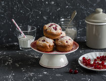 Free Delicious Summer Dessert - Red Currant Muffins  On A Dark Background. Stock Photos - 75115763