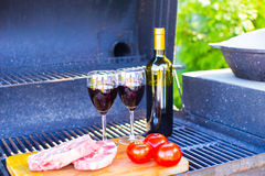 Delicious summer picnic outdoors Royalty Free Stock Images