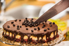 Delicious sweet baked cake with coffee beans and fruit Stock Images