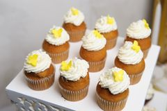 Delicious sweet buffet with cupcakes. Sweet holiday buffet stock photography