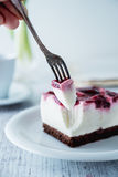 Delicious and sweet cheesecake with cherry jelly Stock Photos