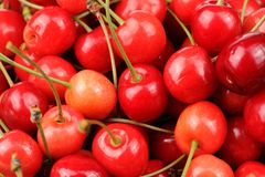 Delicious Sweet Cherries Close-Up Stock Photo