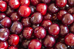 delicious sweet cherries Stock Images