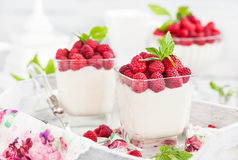 Delicious sweet  mousse decorated with fresh raspberries. Delicious sweet creamy mousse  in a glass decorated with fresh raspberries Royalty Free Stock Photos