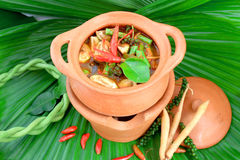 Delicious thai food. Image of delicious Thai food Royalty Free Stock Image