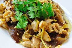 Delicious thai food. On white plate Royalty Free Stock Photography