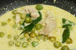 Delicious Thai Green Curry with Chicken and Coconut Milk Royalty Free Stock Image