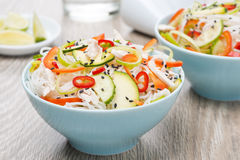 Delicious Thai salad with vegetables, rice noodles and chicken Royalty Free Stock Photography