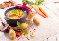 Delicious thick vegetable stew or soup Royalty Free Stock Photo