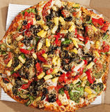 Delicious Thin Crust Vegetarian Pizza. Photo of Delicious Thin Crust Vegetarian Pizza royalty free stock image