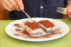 Delicious Tiramisu royalty free stock photo