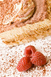 Delicious tiramisu with raspberries Royalty Free Stock Images