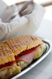 Delicious toasted sandwich Stock Image