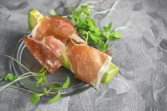 Delicious toasts of avocado and prosciutto with green sprouted mustard. Healthy breakfast. Copy the space. stock image