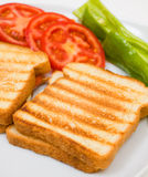 Delicious toasts with tomatoes and peppers. Delicious toasts with sliced tomatoes and green peppers. Close-up studio shot Stock Images