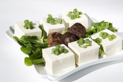 Delicious tofu Stock Image