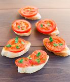 Delicious tomato bruschetta with herbs Royalty Free Stock Photography