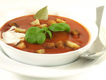 Delicious tomato soup with croutons for a starter Stock Photo