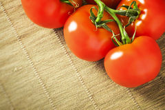 Delicious tomatoes. An image of some delicious red tomatoes Royalty Free Stock Photo