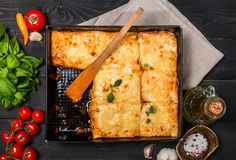 Delicious traditional italian lasagna Royalty Free Stock Photos