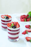 Delicious traditional panna cotta sweet dessert Royalty Free Stock Photos