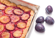 Delicious traditional plum cake Royalty Free Stock Photo
