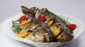 Delicious trout fish baked with lemon, tomatoes and spices stock video