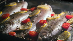 Delicious trout fish is baking in the oven with lemon, tomatoes and spices stock footage