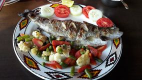 Delicious trout fish Royalty Free Stock Photography