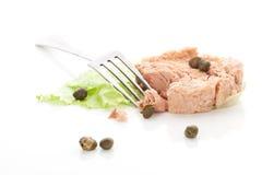 Delicious tuna. Stock Image
