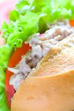 Delicious tuna and mayonnaise sandwich Royalty Free Stock Photos