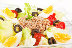 Delicious tuna salad. Stock Photos
