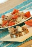 Delicious tuna salad with organic tomato Royalty Free Stock Image