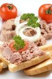delicious tuna salad with organic tomato Stock Image