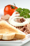delicious tuna salad with organic tomato Royalty Free Stock Images
