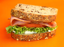 Delicious turkey sandwich Royalty Free Stock Photography
