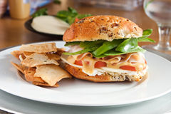 Delicious Turkey Sandwich and Pita Royalty Free Stock Photography