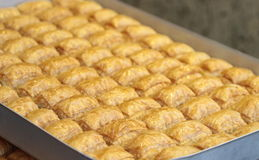 Delicious Turkish baklava Royalty Free Stock Photo