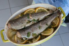 Delicious two trouts with thyme and lemon and onion slices. The delicious two trouts with thyme and lemon and onion slices stock image