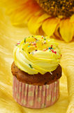 Delicious vanilla cup cake Royalty Free Stock Photography