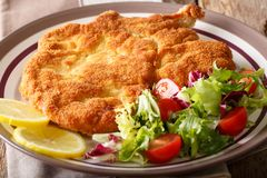 Delicious veal cutlet Milanese with lemon and fresh vegetable sa. Lad close-up on a plate. horizontal Stock Photos