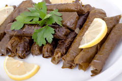 Delicious vegetarian stuffed grape leaves Stock Photography