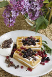 Delicious waffles with berries 18 Stock Images