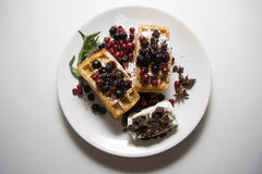 Delicious waffles with berries 08 Stock Images