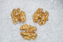 Walnuts on sea salt. Delicious walnuts in a bed of seasalt Stock Images
