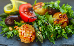Delicious warm salad of lettuce, asparagus and scallops Royalty Free Stock Images