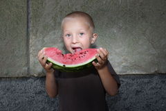 Delicious watermelon Royalty Free Stock Image