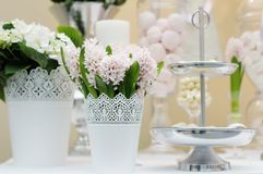 Delicious wedding sweets Royalty Free Stock Images